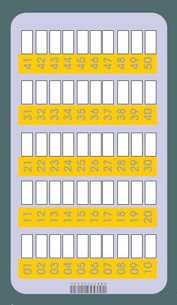 Cartão de Segurança